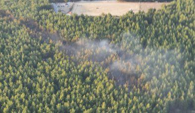 İzmir Gaziemir'de çıkan orman yangını kontrol altına alındı .