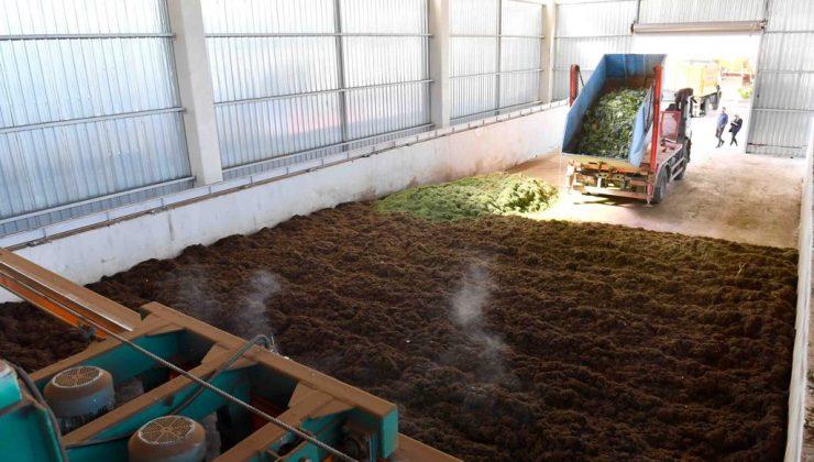 Mansur Yavaş'tan Ekonomiye Katkı. Atık yaş sebze ve meyveleri gübreye dönüştürüyor